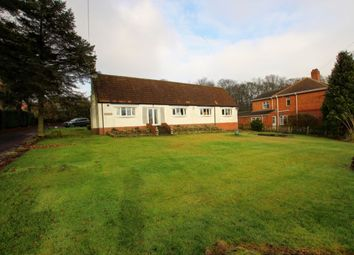 Thumbnail 4 bed bungalow for sale in Woodland Road, Bearpark, Durham