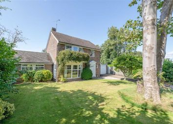 Thumbnail 4 bed detached house for sale in Abbots Close, Battle, East Sussex