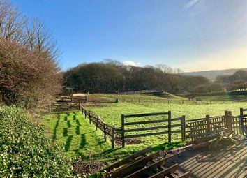 Thumbnail Equestrian property for sale in Down Thomas, Plymouth