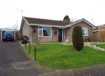 Thumbnail 2 bed bungalow for sale in Spring Close, Bradpole, Bridport