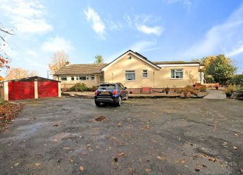 Thumbnail 5 bed detached bungalow for sale in Trelawne, Looe