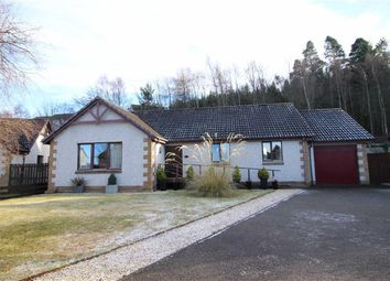 Thumbnail 3 bed detached bungalow for sale in 47, Oakdene Court, Inverness