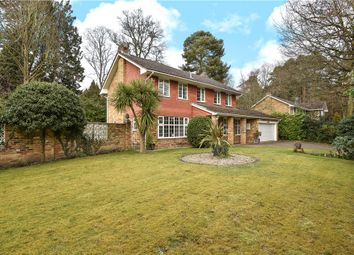 Thumbnail 5 bedroom detached house for sale in Rudd Hall Rise, Camberley, Surrey
