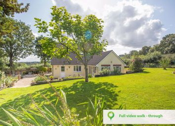 Thumbnail 3 bed detached house for sale in Ham, Combe St. Nicholas, Chard