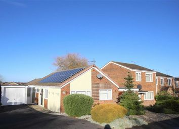 Thumbnail 3 bed detached bungalow for sale in Queenborough, Swindon, Wiltshire