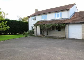 Thumbnail 4 bed detached house to rent in Battleborough Lane, Brent Knoll, Highbridge