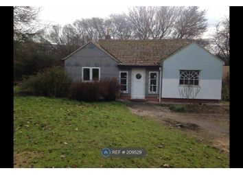 Thumbnail 2 bedroom bungalow to rent in Withindale Lane, Long Melford