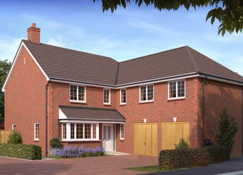 Thumbnail 4 bed detached house for sale in Brent Street, Brent Knoll, Highbridge