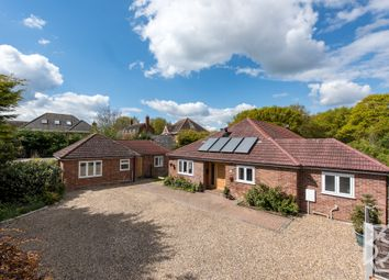 Thumbnail 4 bed detached house for sale in Braiswick, Colchester, Essex