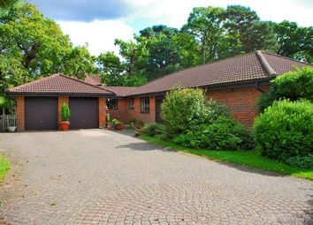 Thumbnail 4 bed detached bungalow for sale in Forest Glade Close, Brockenhurst