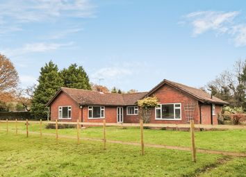 Thumbnail 4 bed detached bungalow to rent in Redwood Lane, Medstead, Alton