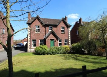Thumbnail 5 bedroom detached house for sale in Kesh Road, Lisburn