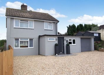 Thumbnail 4 bed detached house for sale in Grove Hill, Colyton