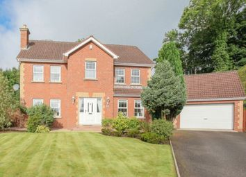 Thumbnail 5 bed detached house for sale in Ravensdale, Newtownabbey