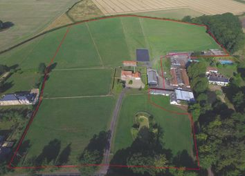 Thumbnail Commercial property for sale in Hannover Farm, Hale Road, Holme Hale, Norfolk