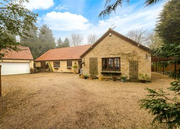 Thumbnail 4 bed detached bungalow for sale in Main Street, North Rauceby, Sleaford