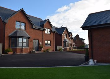 Thumbnail 5 bed detached house for sale in Corberry Park, Dumfries