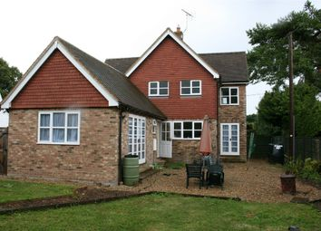Thumbnail 3 bed detached house to rent in Bramdean, Alresford, Hampshire