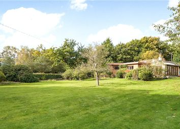 Thumbnail 3 bedroom detached bungalow for sale in Brick Hill, Chobham, Woking