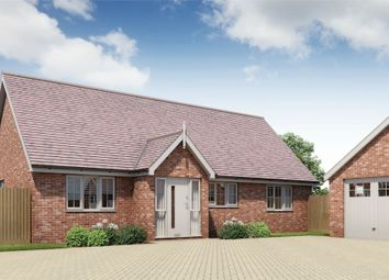 Thumbnail 3 bed detached bungalow for sale in Plot 17 Springfield Meadows, Little Clacton, Essex