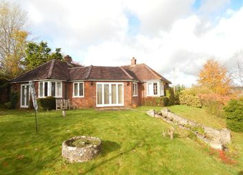 Thumbnail 2 bed bungalow to rent in Rowdens, Old Blandford Road, Coombe Bissett