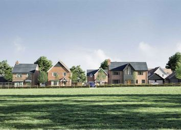 Thumbnail 4 bed detached house for sale in Priors Hill, Hitchin, Hertfordshire