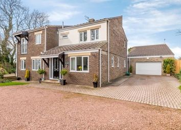 Thumbnail 4 bed detached house for sale in Dalton Piercy, Hartlepool