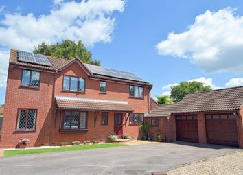 Thumbnail 5 bed detached house for sale in Pear Drive, Willand