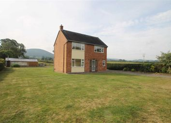 Thumbnail 4 bed detached house to rent in Plox Green Road, Minsterley, Shrewsbury