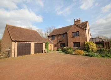 Thumbnail 4 bed detached house for sale in Horseley Fen, Chatteris