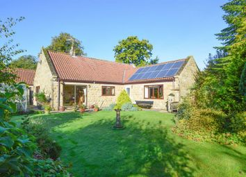 Thumbnail 3 bed detached bungalow for sale in Normanby, Sinnington, York