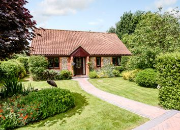 Thumbnail 4 bed detached bungalow for sale in Hoe Road South, Swanton Morley, Dereham