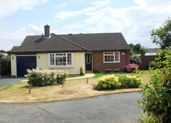 Thumbnail 3 bed bungalow for sale in 30 Bramley Close, Ledbury, Herefordshire