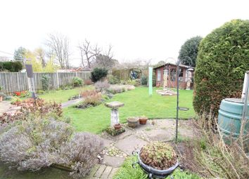 Thumbnail 3 bed detached bungalow for sale in Barretts Lane, Needham Market, Ipswich