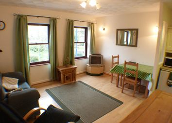 Thumbnail 1 bed flat to rent in Mumbles Rd, Mumbles, Swansea