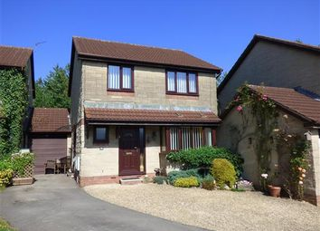 Thumbnail 3 bed detached house for sale in The Martins, Tutshill, Chepstow
