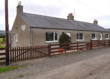 Thumbnail 3 bed cottage to rent in Horn Farm Cottage, Errol, Perthshire