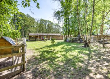 Thumbnail 3 bed bungalow for sale in Southwick Road, North Boarhunt, Fareham, Hampshire