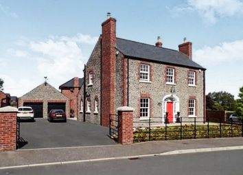 Thumbnail Detached house for sale in 19 Farriers Green, Carnreagh, Hillsborough