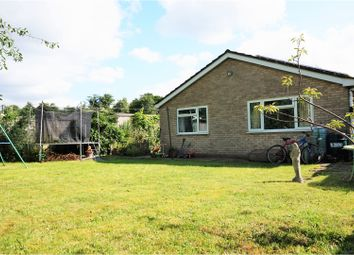 Thumbnail 3 bed detached bungalow for sale in St. Benedicts Road, Brandon