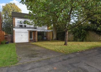 Thumbnail 4 bed detached house to rent in Martingales Close, Ham, Richmond