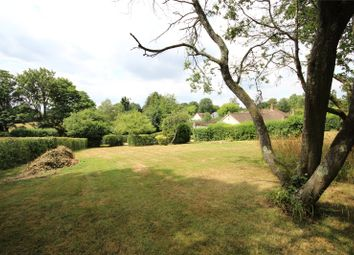 Thumbnail Land for sale in Lymington Bottom, Four Marks, Alton, Hampshire