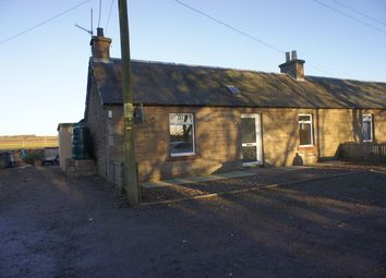 Thumbnail 2 bedroom semi-detached house to rent in Kinnell, Arbroath
