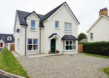 Thumbnail 4 bedroom detached house for sale in Mullaghboy Manor, Larne