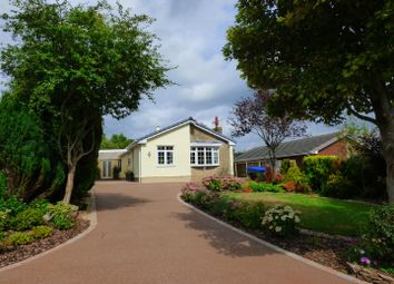 Thumbnail 2 bed detached bungalow for sale in Severn View Road, Woolaston, Lydney