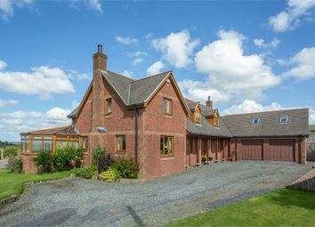 Thumbnail 5 bed detached house for sale in Staddon Road, Holsworthy, Devon
