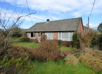 Thumbnail 3 bed detached bungalow for sale in Forge Lane, Zeals