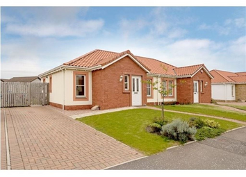 Thumbnail 2 bed property to rent in Silverdyke Gardens, Anstruther