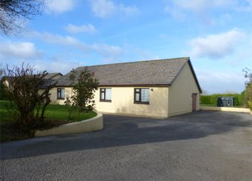 Thumbnail 3 bed detached bungalow for sale in Hi-Winds, Cold Blow, Narberth, Pembrokeshire