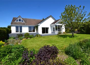 Thumbnail 4 bed bungalow for sale in Heathstock, Stockland, Honiton, Devon